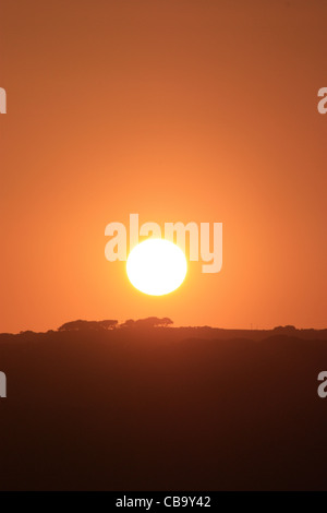 Sun set with trees on the horizon and a nice red orange sky - Stock Photo