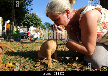 Stock photo of hungarian vizsla pups playing outside - Stock Photo