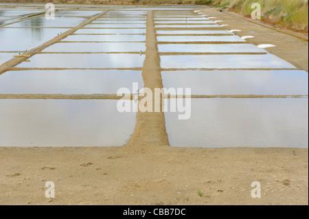 Stock photo of sea salt production on the ile d'oleron, France. - Stock Photo