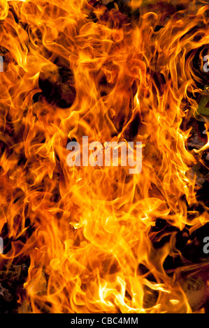Burning household waste in the indian countryside. Andhra Pradesh, India - Stock Photo