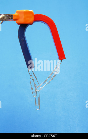 A horseshoe magnet attracts steel paper clips - Stock Photo