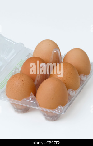 six or half a dozen brown hens eggs in a transparent plastic egg tray or box - Stock Photo