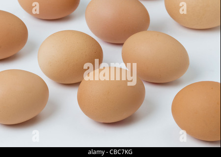a group of brown hens eggs against a white background - Stock Photo