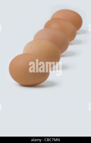 five brown hens eggs in a row against a white background - Stock Photo