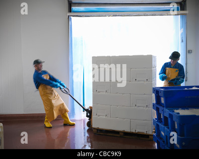Workers carting pallets in warehouse - Stock Photo