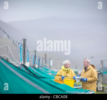 Workers talking at fish farm - Stock Photo
