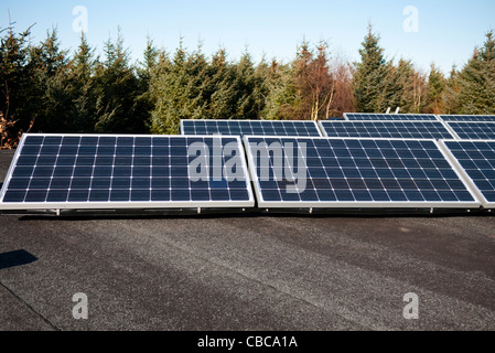 Solar PV array on mounted on flat roof panels - Stock Photo
