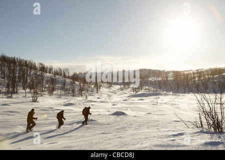 Cross-country skiers walking in snow - Stock Photo
