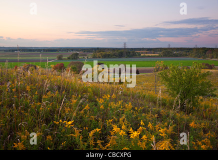 Sunset over a section of the Holland Marsh. Bradford West Gwillimbury, Ontario, Canada. - Stock Photo