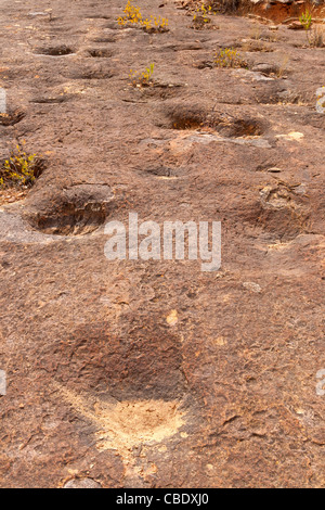Fossilized dinosaur tracks in Torotoro national park, Bolivia- Cretaceous period - Stock Photo