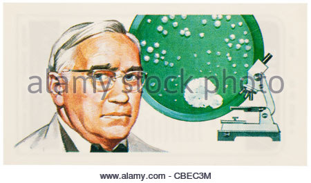 Sir Alexander Fleming 1881-1955 was a Scottish biologist and pharmacologist. EDITORIAL ONLY - Stock Photo