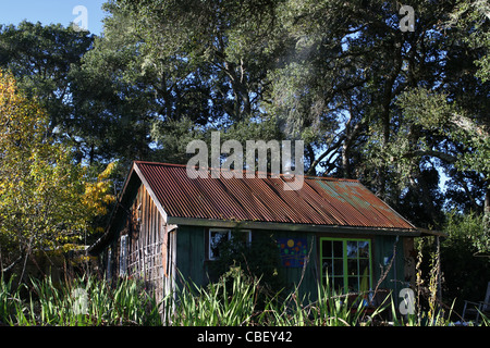 ... A Rustic Cabin In The Woods.   Stock Photo