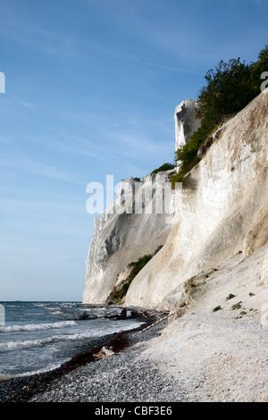 Møns Klint, the steep chalk cliffs up to 120m above sea level on the eastern Baltic Sea coast of island Møn southeast of Sealand, Denmark, Møn or Moen Stock Photo