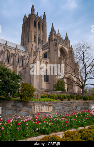 Facade of the National Cathedral in Washington DC - Stock Photo