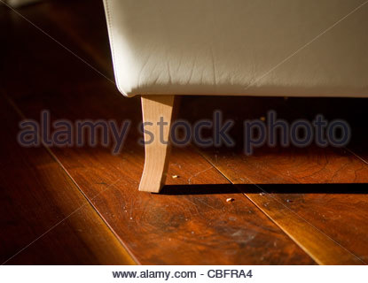 Wooden floor leather armchair - Stock Photo