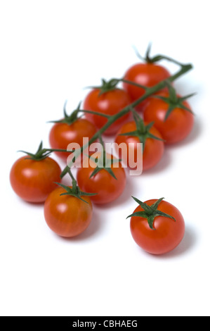 cherry tomatoes on the vine cutout - Stock Photo