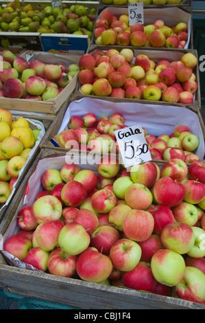 Polish apples at market next to Hala Targowa the main market hall central Gdansk Pomerania northern Poland Europe - Stock Photo