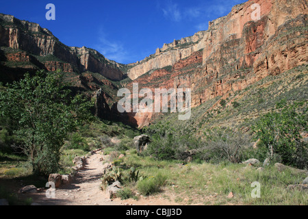 View up to south rim of the Grand Canyon from near Indian Gardens along the Bright Angel Trail in the Grand Canyon - Stock Photo