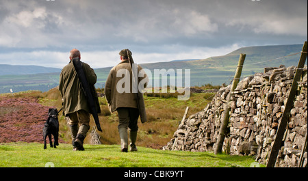 Two guns, or two men with shotguns, with a black Labrador dog walking across the moor in North Yorkshire with back - Stock Photo