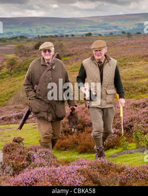 North Yorkshire, England UK - Two men, one carrying a red grouse, walking across a grouse moor during a driven grouse - Stock Photo