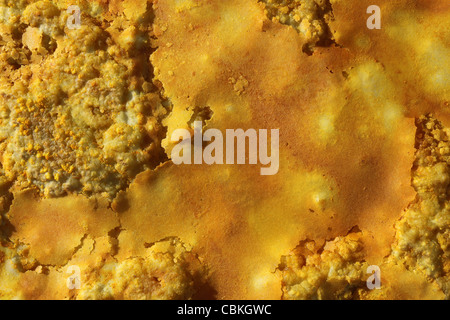 January 27, 2011 - Dallol geothermal area, potassium salt crust formed by brine hot springs, Danakil Depression, - Stock Photo