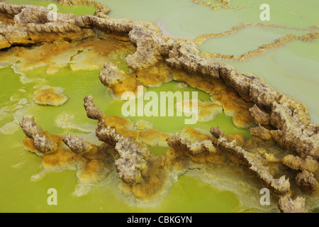 February 1, 2011 - Dallol geothermal area, potassium salt deposits formed by brine hot springs, Danakil Depression, - Stock Photo