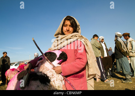 Herder girl in cattle and sheep market in Kabul Afghanistan - Stock Photo