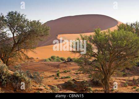 Sand dune (Big Mama) at Sossusvlei, Namib-Naukluft Park, Namibia - Stock Photo