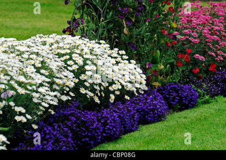 Herbaceous border with mixed planting of perennials cottage garden summer flowering flowers herbaceous border bed flower plant planting mixed perennials colour color stock photo mightylinksfo