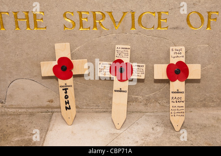 Poppies on Remembrance Day ( also known as Poppy Day or Armistice Day ) in Norwich , Norfolk , England , Uk - Stock Photo