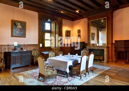 Loire Valley, Azay le Rideau Castle - Stock Photo