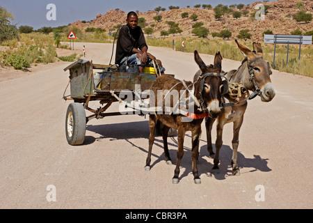 Herero man on donkey cart, Damaraland, Namibia - Stock Photo