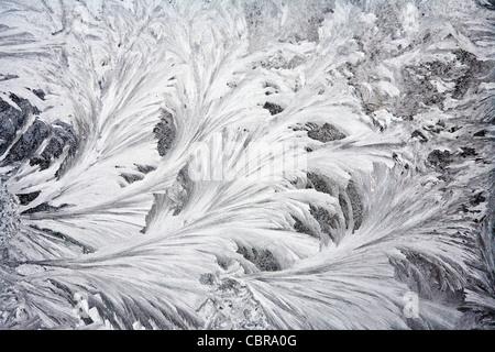 Frosty patterns on a window-glass - Stock Photo