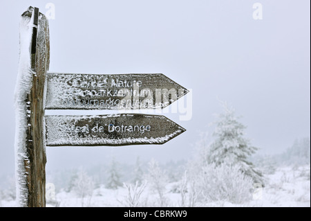 Frozen signpost covered in ice at nature reserve High Fens / Hautes Fagnes in the snow in winter, Belgian Ardennes, Belgium