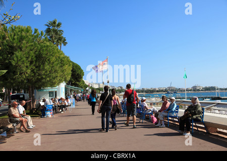 La Croisette, Cannes, Cote d'Azur, French Riviera, Mediterranean, Provence, France, Europe