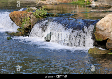 Water rushes over rocks in De Leon Springs State Park in central Florida - Stock Photo
