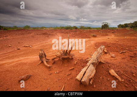 Eroded soil in Sarigua national park (desert) in Herrera province, Republic of Panama. - Stock Photo