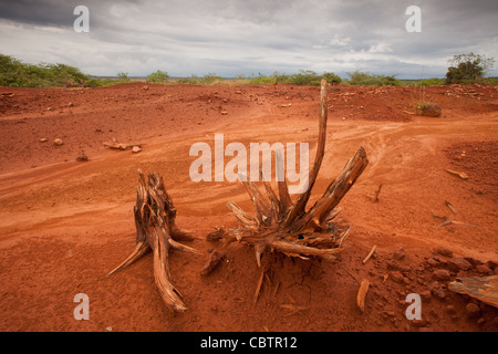 Eroded soil in Sarigua national park (desert) in Herrera province, Republic of Panama. - Stock Photo