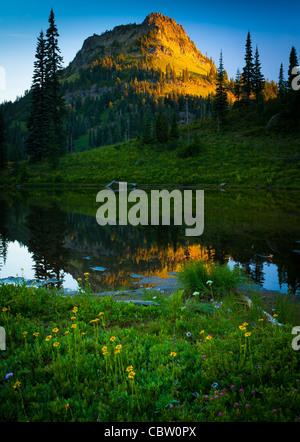 Sunrise in Mount Rainier National Park in Natches Peak trail area near Tipsoo Lake - Stock Photo