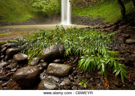Waterfall Chorro Las Palmas, in Area recreativa El Salto de Las Palmas, Veraguas province, Republic of Panama. - Stock Photo