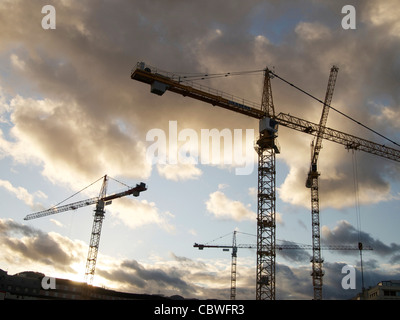 Tall cranes on a construction site - Stock Photo