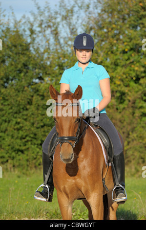 Young rider on back of a Bavarian warmblood horse. - Stock Photo