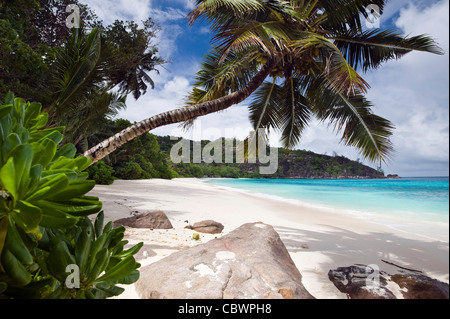 Four Seasons resort beach, Mahe, Seychelles - Stock Photo