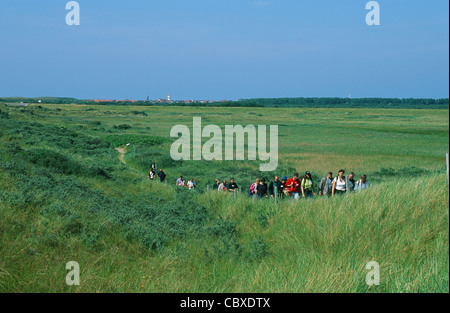 Walking path in the coastal nature reserve NSG Flinthörn on the East Frisian island of Langeoog in Germany's wadden - Stock Photo
