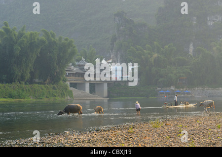 Cormorant fisherman on raft and woman tending domestic Asian Water Buffalo in Li river Yangshuo Peoples Republic - Stock Photo