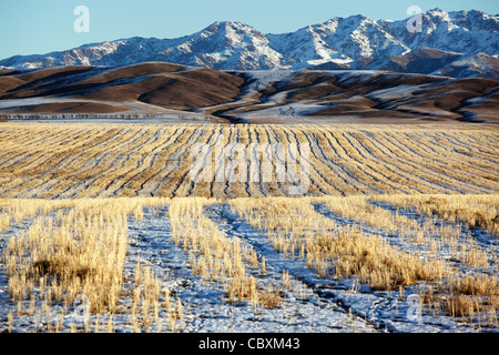 First snow on the fields and mountains - Stock Photo