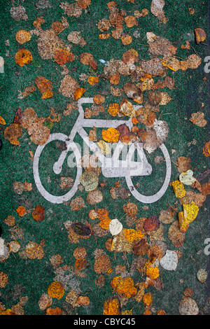 Autumn leaves on a bicycle lane - Stock Photo