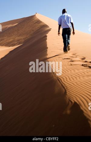 Dune 45 - Sossusvlei National Park - Namib-Naukluft National Park, Namibia, Africa - Stock Photo