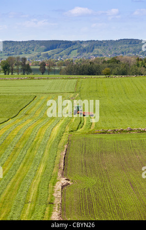 Tractor on the field for  hay harvesting - Stock Photo