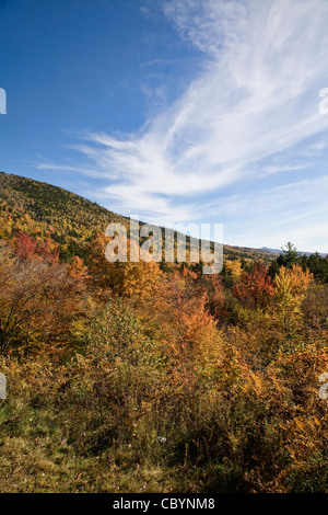 Scenes of the White Mountain National Forest from Bear Notch Road, New Hampshire. - Stock Photo